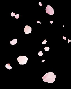 背景花びら2